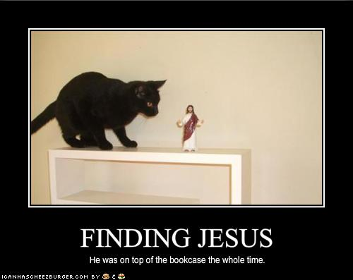 Cat finds Jesus.  srsly!